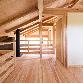 比良_雑木林に建つ家4